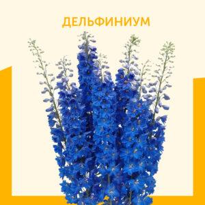 делmabybev