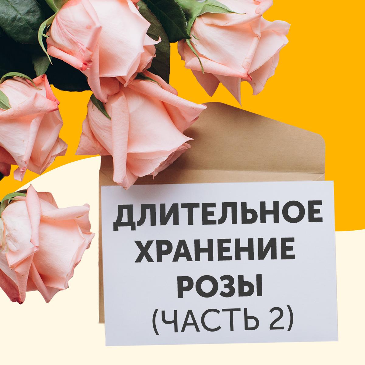 хранение розы ч2